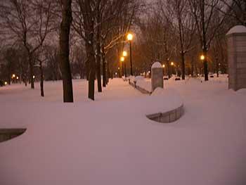 Snowynightpark1