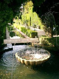 View_of_garden