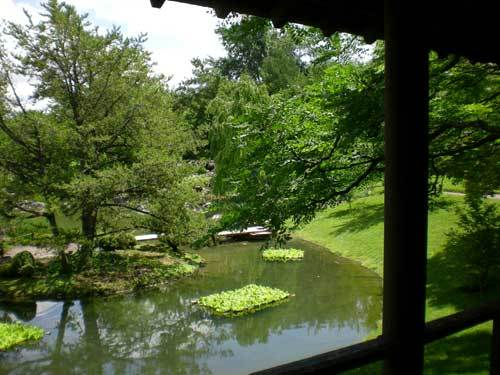 Japanesegarden_pond_2