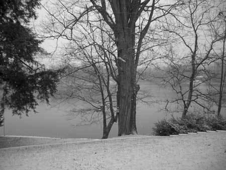 Lake_nov_1